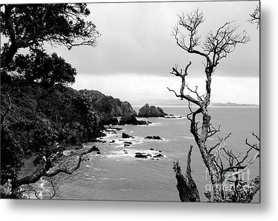 Ngunguru Bay New Zealand Metal Print