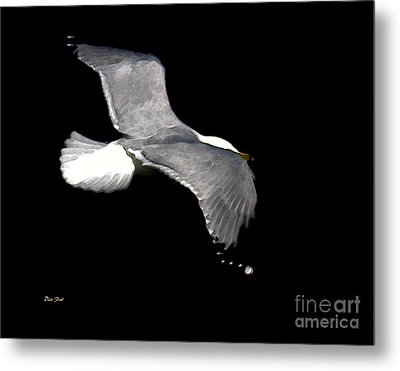 Night Flight Metal Print by Dale   Ford