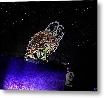 Night Owl Metal Print by David Lee Thompson