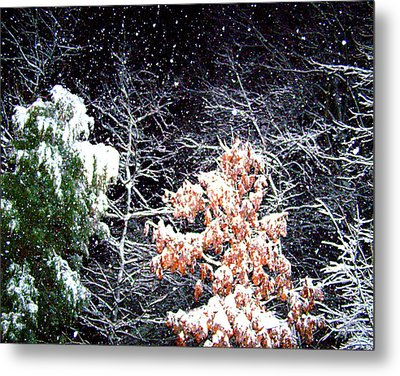 Night Snow 2 Metal Print by Sandi OReilly