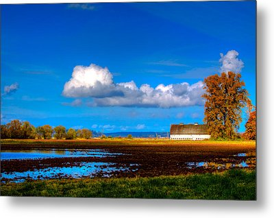 Nisqually Wildlife Refuge P35 Metal Print by David Patterson