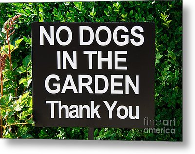 No Dogs In The Garden Thank You Metal Print by Andee Design