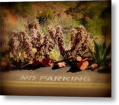 No Parking Metal Print by Cindy Wright