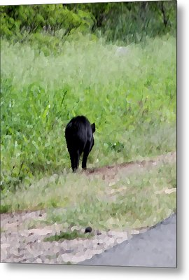 No Picture Today Said The Boar Metal Print by Elizabeth  Doran