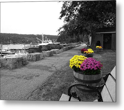 Metal Print featuring the photograph Northeast Harbor by Kelly Reber