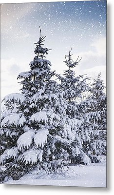 Northumberland, England Snow-covered Metal Print by John Short