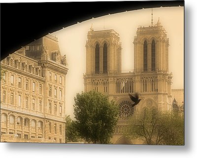 Notre Dame Cathedral Viewed Metal Print by John Sylvester
