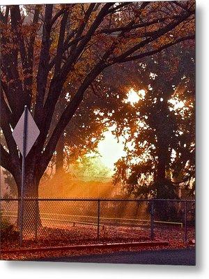 November Sunrise Metal Print by Bill Owen