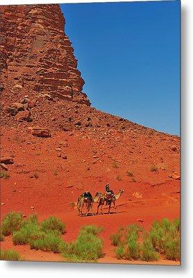 Nubian Camel Rider Metal Print by Tony Beck