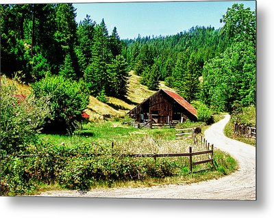 Nw California Country Road Metal Print by Frank Feliciano