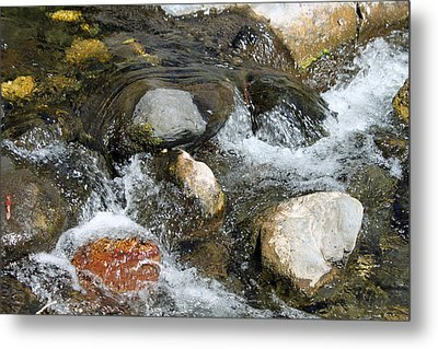 Oak Creek Metal Print by Lauri Novak