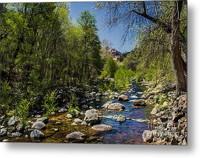 Oak Creek Metal Print by Robert Bales