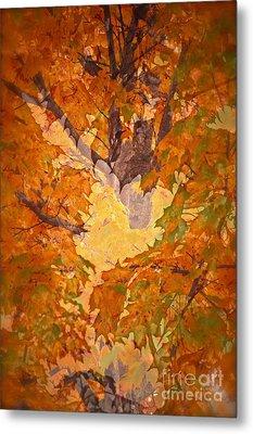 October In Washington Metal Print by Gwyn Newcombe
