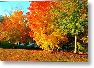 Metal Print featuring the photograph Ohio Autumn Maples by Dennis Lundell