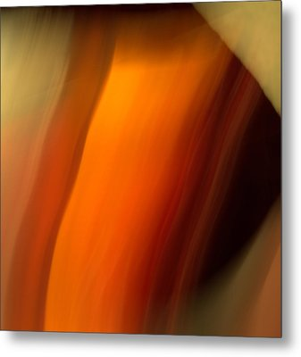 Metal Print featuring the mixed media O'keefe I by Terence Morrissey