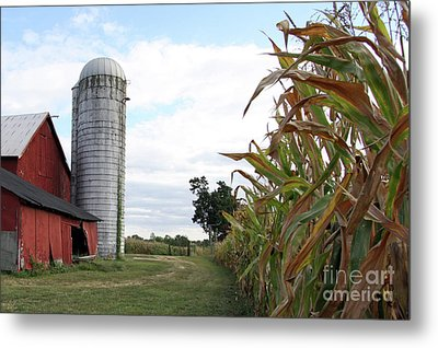 Metal Print featuring the photograph Old Barn And Silo by Denise Pohl
