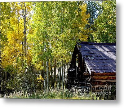 Old Cabin In The Golden Aspens Metal Print by Donna Parlow