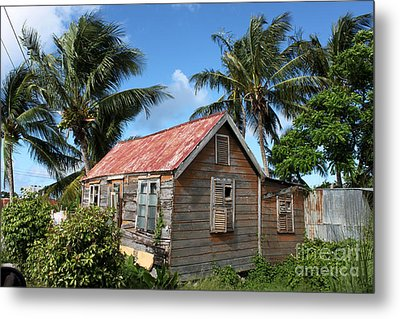 Old Chattel House 2 Metal Print by Barbara Marcus