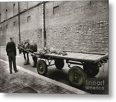 Old Clydesdale Dublin Metal Print by Louise Fahy