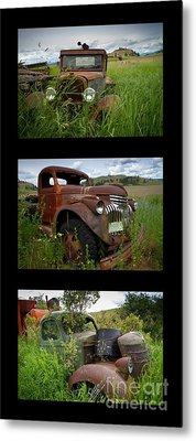 Old Guys 7 Metal Print by Idaho Scenic Images Linda Lantzy