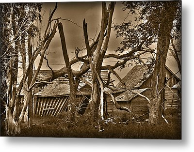 Old Homestead Metal Print by Shane Bechler