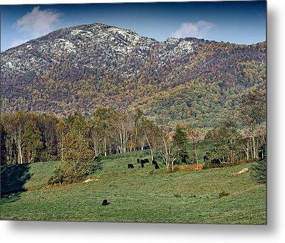 Old Rag Mountain - Shenandoah National Park - Virginia Metal Print by Brendan Reals