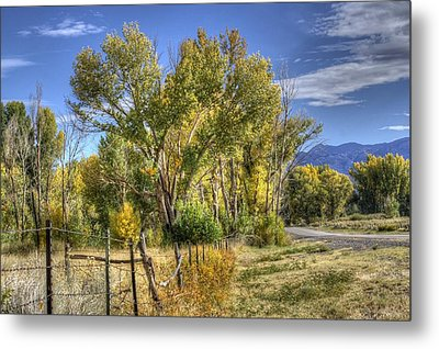 Metal Print featuring the photograph Old Ranch Near Bishop by Michele Cornelius