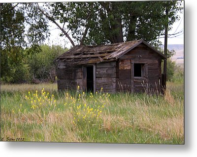 Old Shed Metal Print by C Sitton