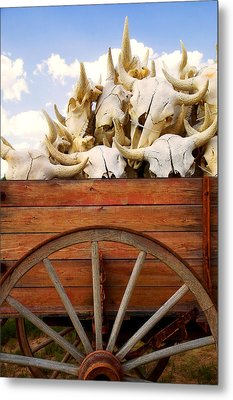 Old Wagon Full Of Buffalo Skulls Metal Print by Garry Gay