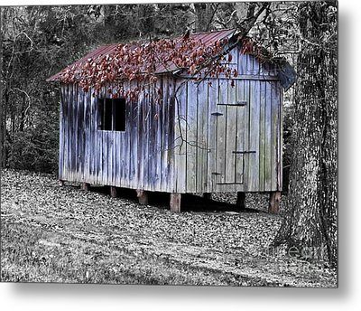 Old Weathered Shed Metal Print by Betty LaRue