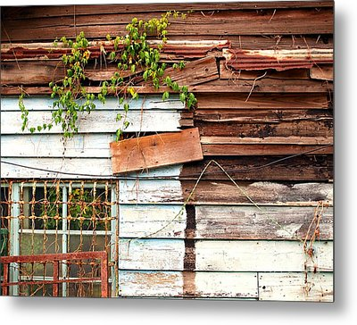 Old Wooden Shack Metal Print by Yali Shi