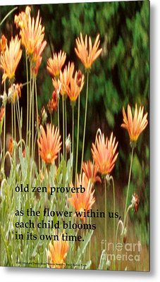 Old Zen Proverb Metal Print by Richard Donin