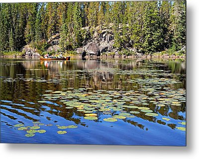 On A Lily Pond - 1 Metal Print by Larry Ricker