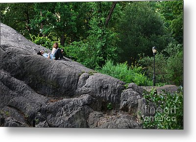 On The Rocks In Central Park Metal Print by Lee Dos Santos