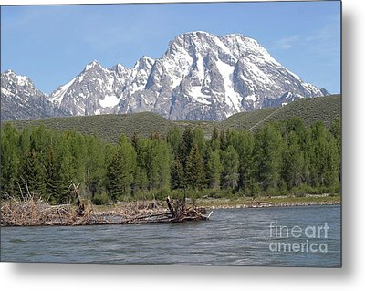 On The Snake River Metal Print by Living Color Photography Lorraine Lynch