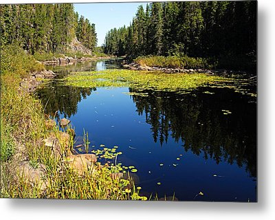On The Way To East Lunch Lake Metal Print by Larry Ricker