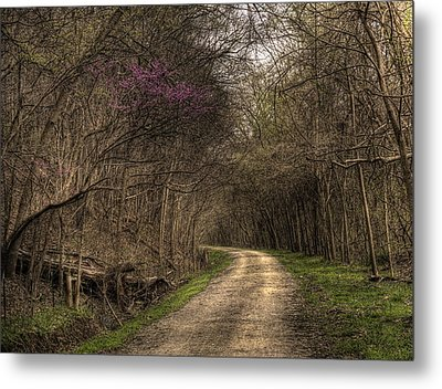 On This Trail Metal Print by William Fields