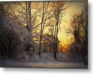 Once Upon A Winter Morning.. Metal Print by Yelena Rozov