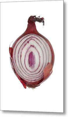 Onion Metal Print by Frank Tschakert
