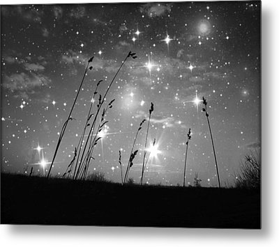 Only The Stars And Me Metal Print by Marianna Mills