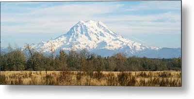 Metal Print featuring the photograph Open Range by Rob Green