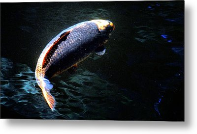 Optical Koi Llusion Metal Print by Don Mann