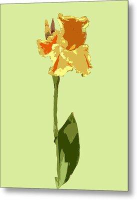Orange And Yellow Flower Metal Print by Karen Nicholson