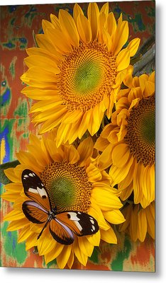 Orange Black Butterfly And Sunflowers Metal Print by Garry Gay