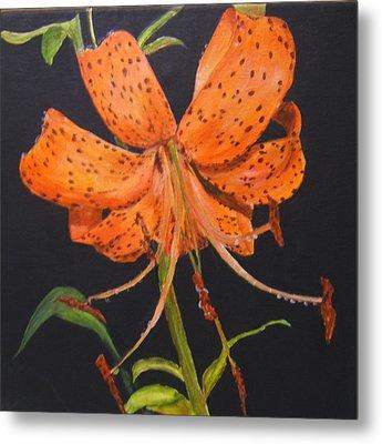 Orange Day Lilies Metal Print by Maureen Pisano