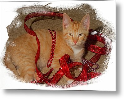 Orange Kitten With Red Ribbon Metal Print