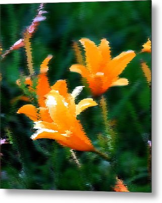 Metal Print featuring the photograph Orange Lilies by Elizabeth  Doran