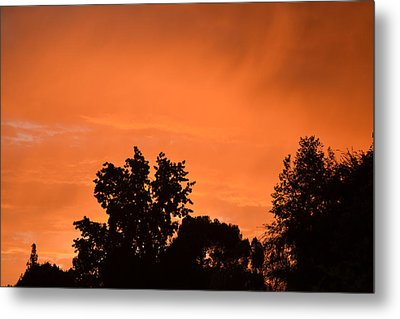 Orange Sky Metal Print by Naomi Berhane