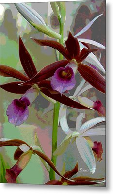 Orchid Sonata Metal Print by Suzanne Gaff