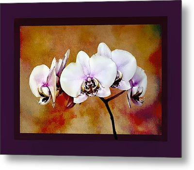 Metal Print featuring the painting Orchids by Mary Morawska